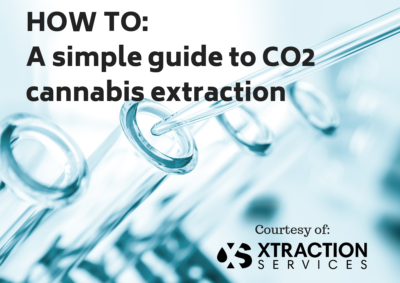 A simple guide to cannabis extraction