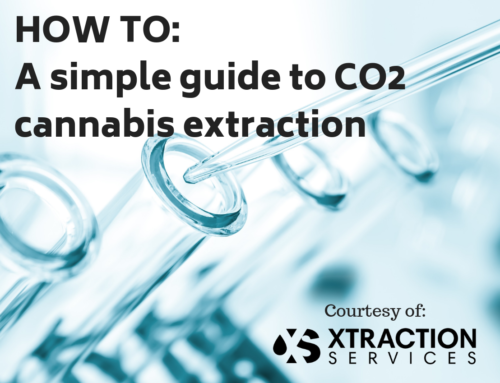 How to: a Simple Guide to Cannabis Extraction